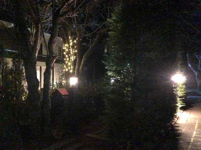 イルミ11門の外から2.jpg