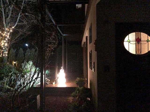 イルミ20玄関から2.jpg