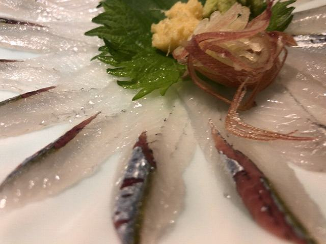 サヨリ3.jpg