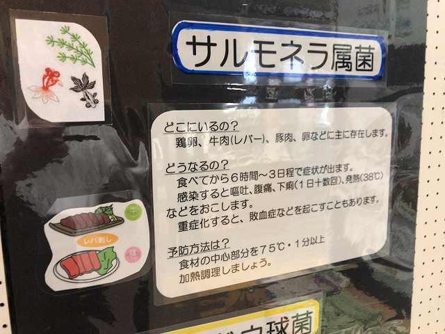 サルモネラ.jpg