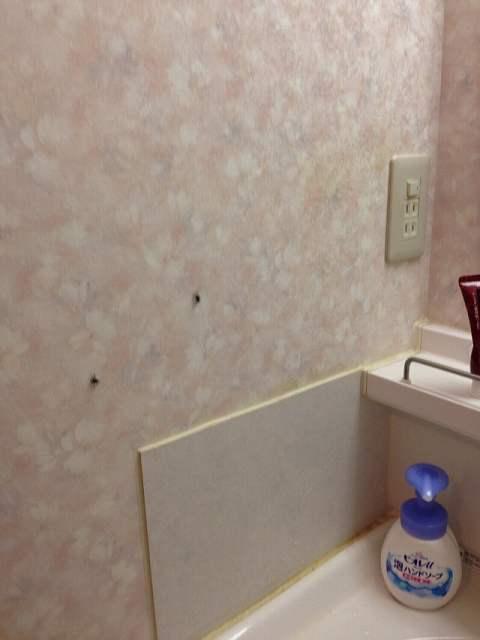 ジャン家の洗面所.jpg
