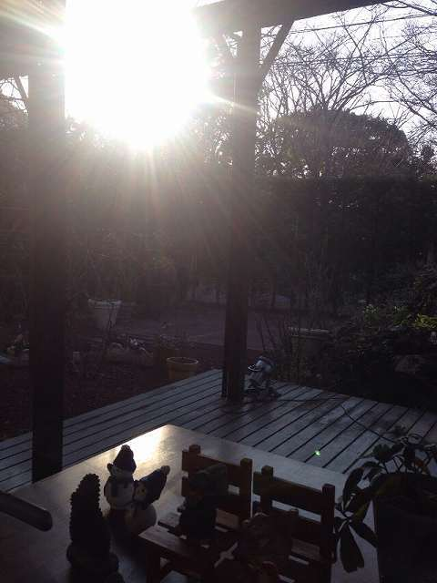 テラスに朝日が.jpg