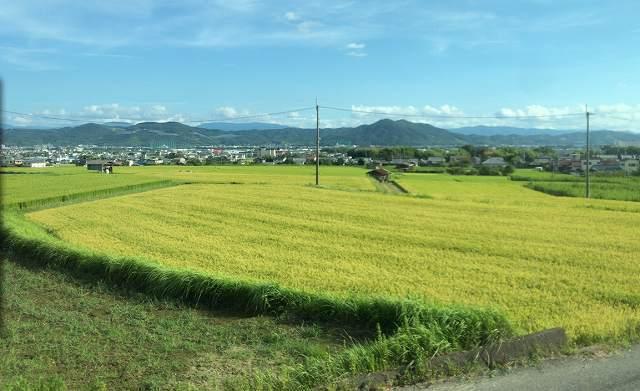 和歌山の風景.jpg