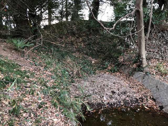 堀の行き止まりから水が湧き出ている.jpg