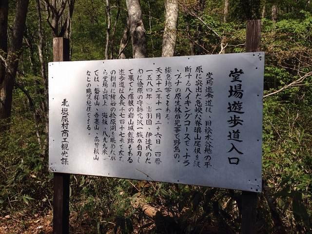 堂場山2.jpg