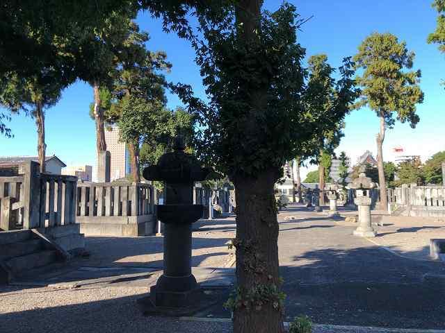 墓地13.jpg