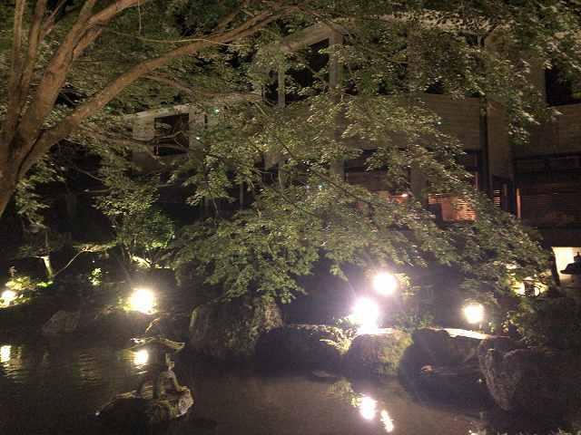 夜12池の向こうから船山館7.jpg