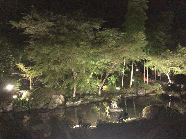 夜20池3.jpg