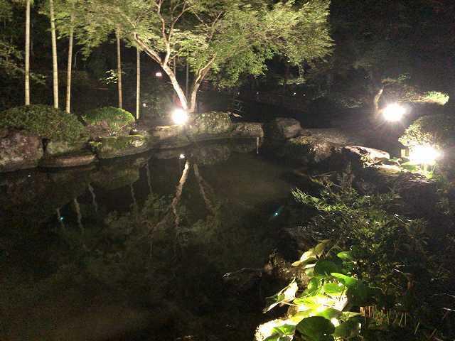 夜26池9.jpg
