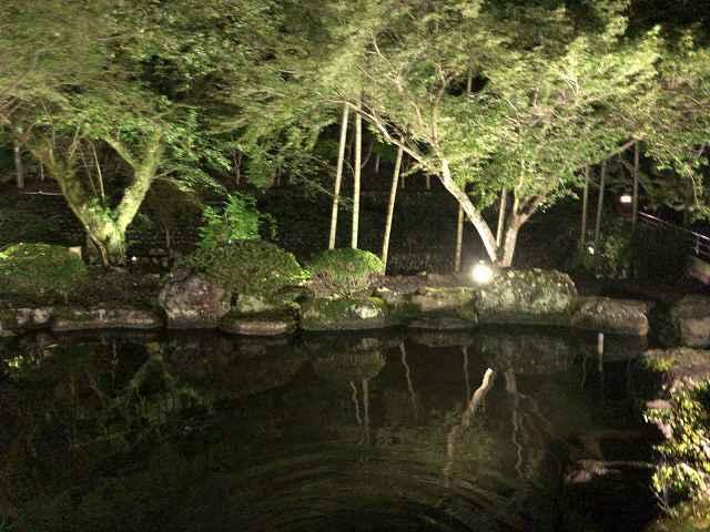 夜27池10.jpg
