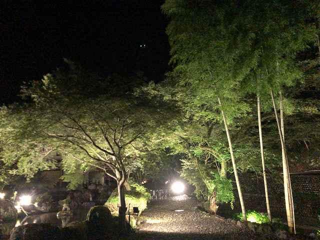 夜3庭1.jpg