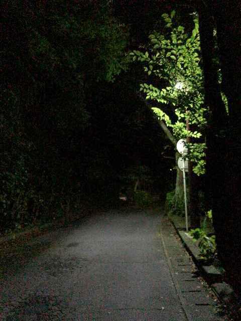 夜41外.jpg