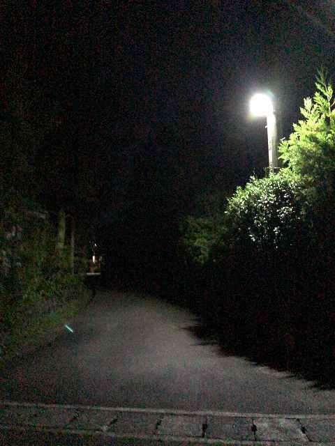 夜45外.jpg