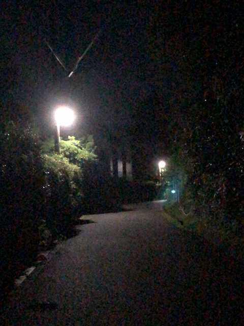 夜50外.jpg