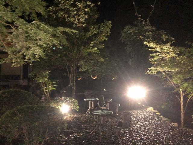 夜5庭3.jpg