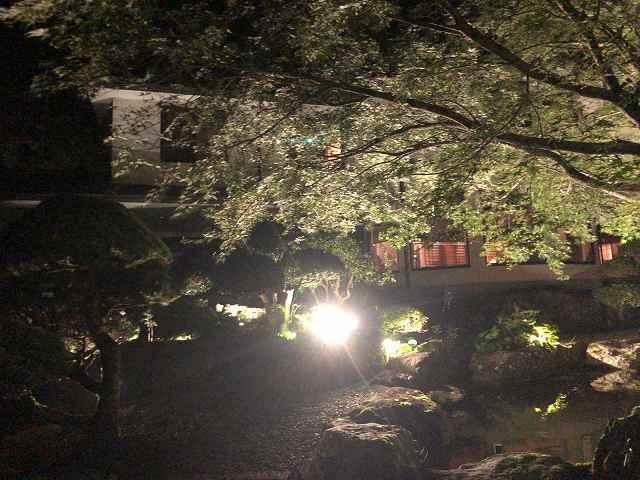夜6池の向こうから船山館1.jpg