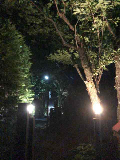 夜7.jpg