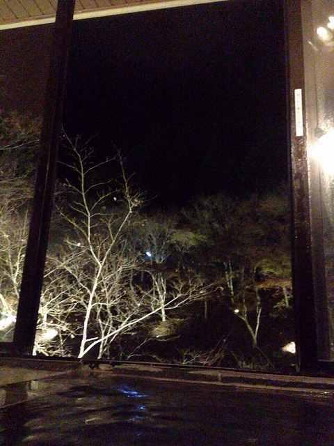夜の清水.jpg