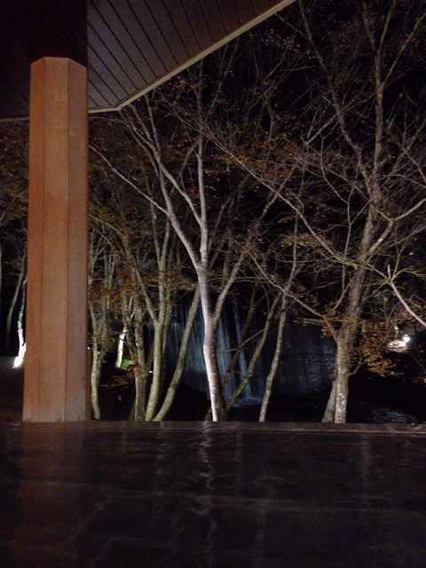 夜の渓流2.jpg