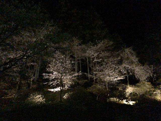 大森山側1.jpg