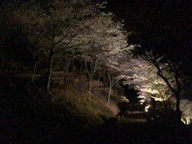 大森山側5.jpg