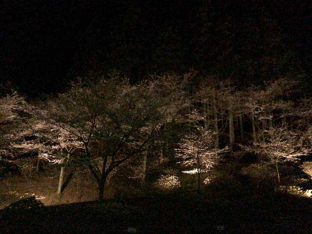 大森山側7.jpg