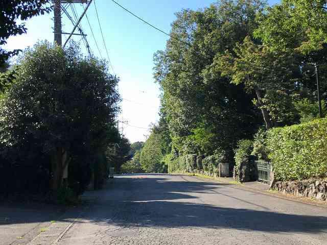 散歩12.jpg