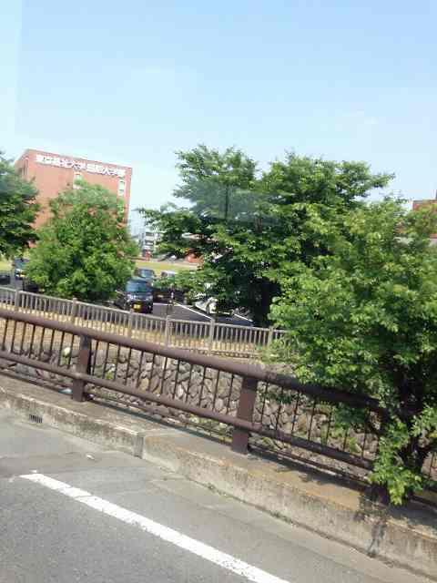 東京福祉大学2.jpg