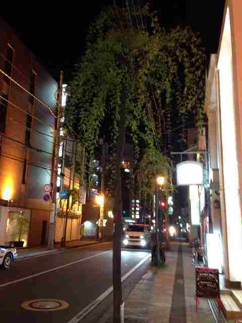 柳川町.jpg