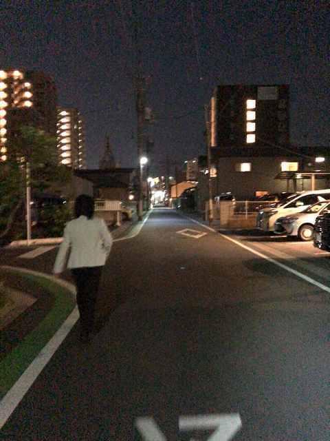 毎日歩いた道.jpg