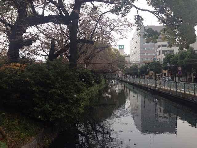 水堀1.jpg