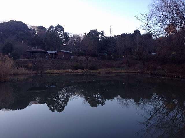 池11.jpg