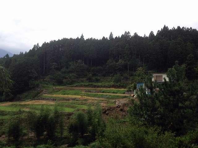 波木井山5.jpg