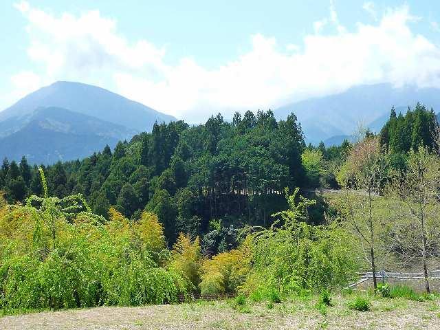 波木井山2.jpg