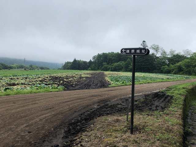 泥だらけの路2.jpg