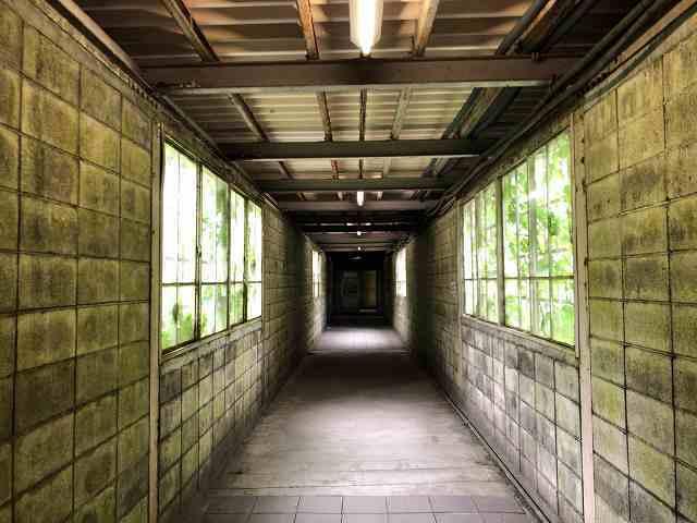 渡り通路2.jpg