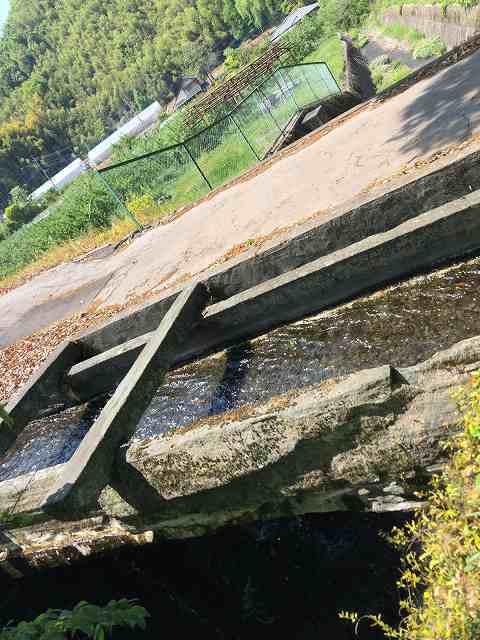 石樋9路と並んで川を渡っている7ギリギリの角度で.jpg