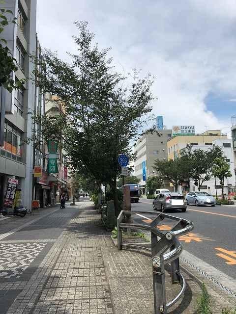 祇園通り1.jpg