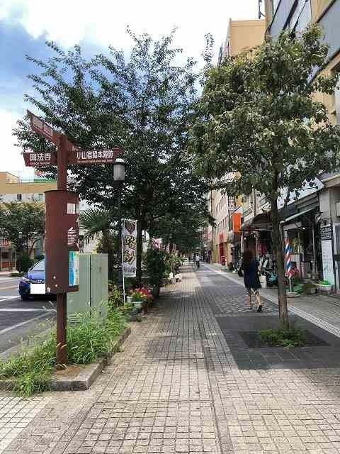 祇園通り2.jpg