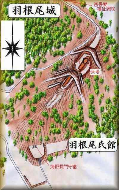羽根尾城余湖先生鳥観図.jpg