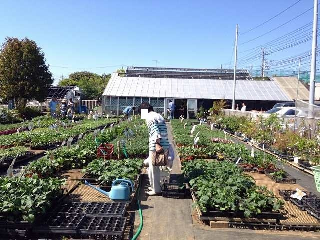 菜園8.jpg