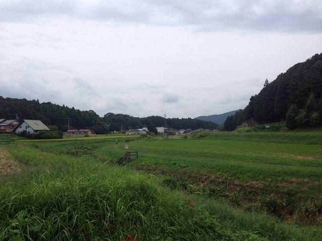 連吾川2.jpg