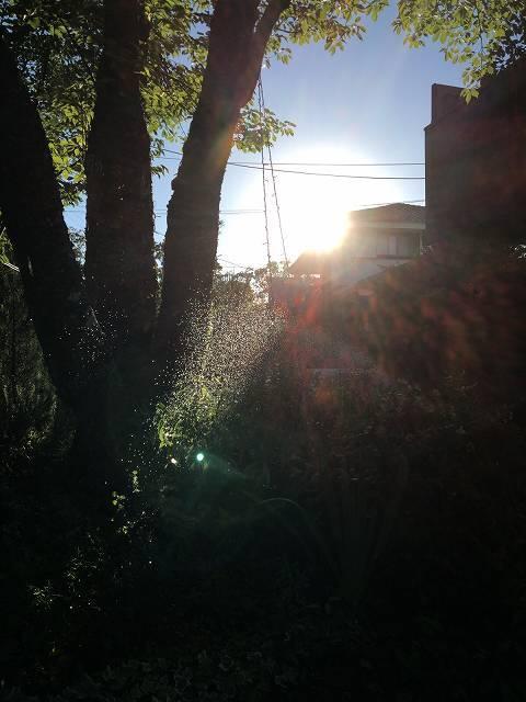 陽は西に1.jpg