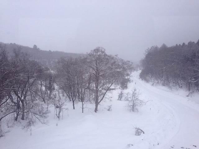 雪景色4.jpg