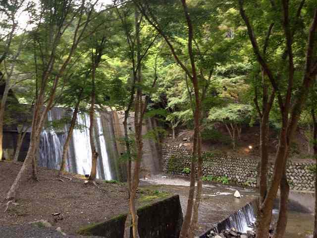 静山4.jpg